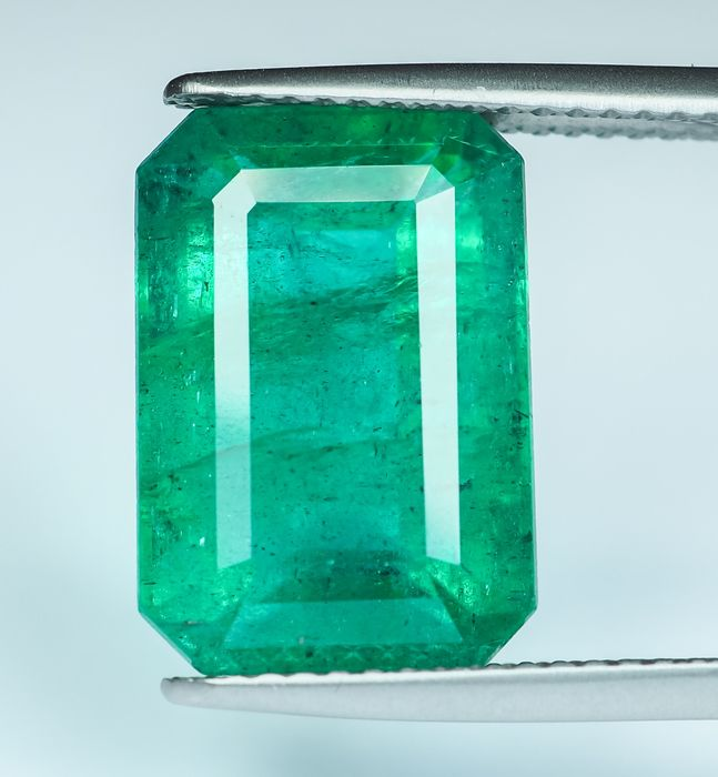 No Reserve - Intense Green Emerald - 8.35 ct