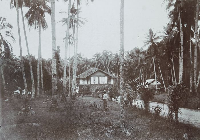 August Kaulfuss (1861-1909) - Native in Penang - Malaysia, 1890.