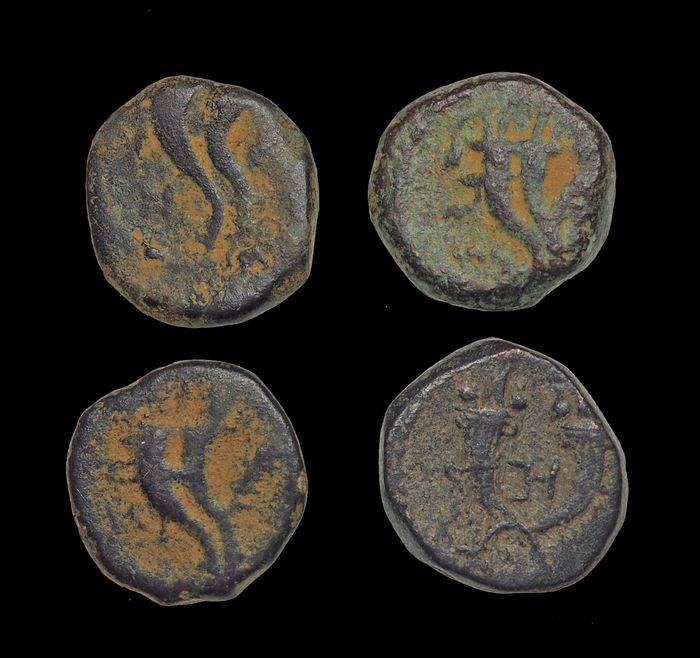 Nabataea - Kings of Petra. Lot of 4 AE coins 9 B.C. to A.D. 40