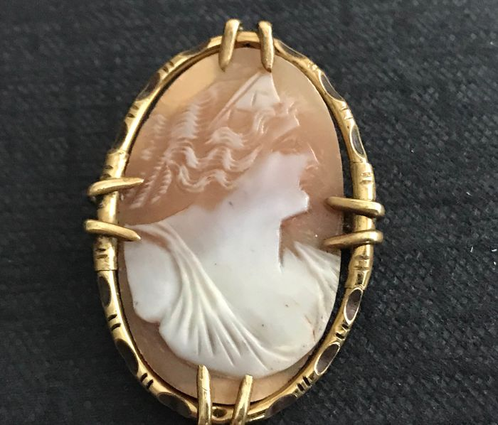 Shell cameo - Gold tone wood inlay - Brooch