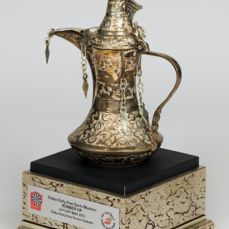 Darts - PDC - World Series of Darts - Dubai Open 2013 - Runner Up trophy