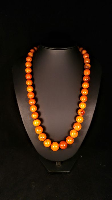 Ambre Baltique Vintage - Collier