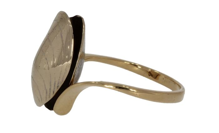 Zeeuwse Mossel - 18 kt. White gold, Yellow gold - Ring