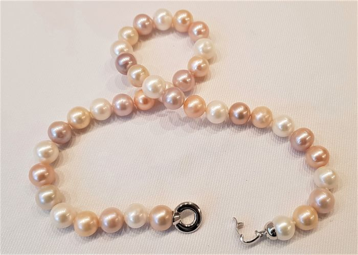 No reserve price - 925 Silver - 11x12mm Multi Cultured Pearls - Necklace