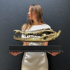 Large Saltwater Crocodile Skull fashioned in bronze, on custom stand - Crocodylus porosus - Bronze