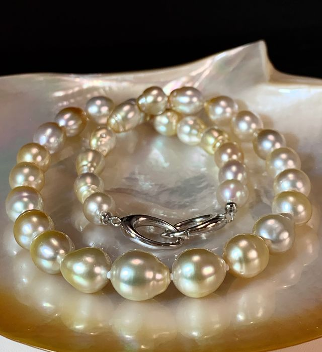 #LOW RESERVE PRICE# - 925 Golden south sea pearls, Silver, Huge Size 10,2x13 mm - Necklace