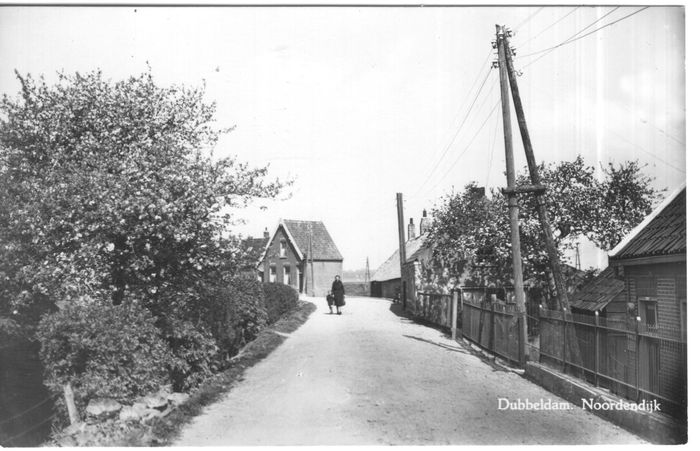 Netherlands - South Holland - old and very old village and city views - Postcards (Collection of 131) - 1900-1950