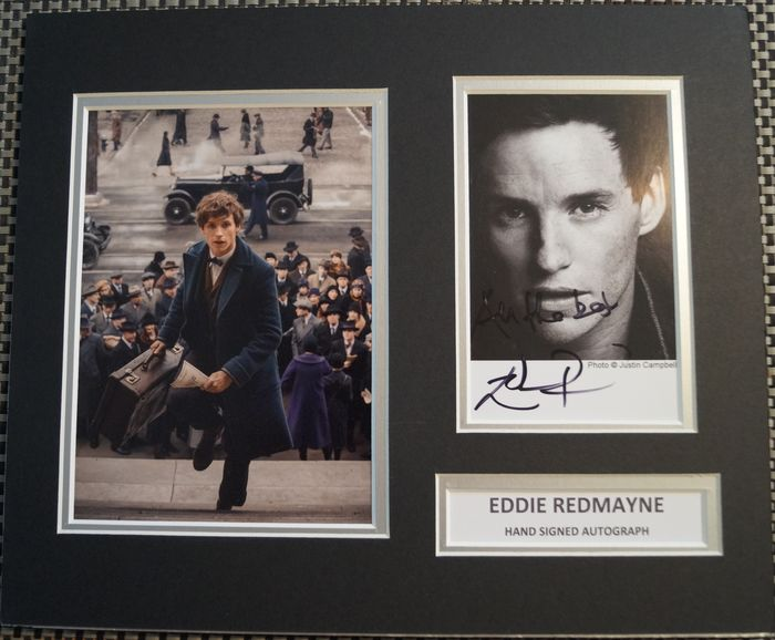 Fantasic Beasts - and Where to Find Them  - Eddie Redmayne (Newt Scamander)  - Foto, Handtekening, signed, mounted with COA