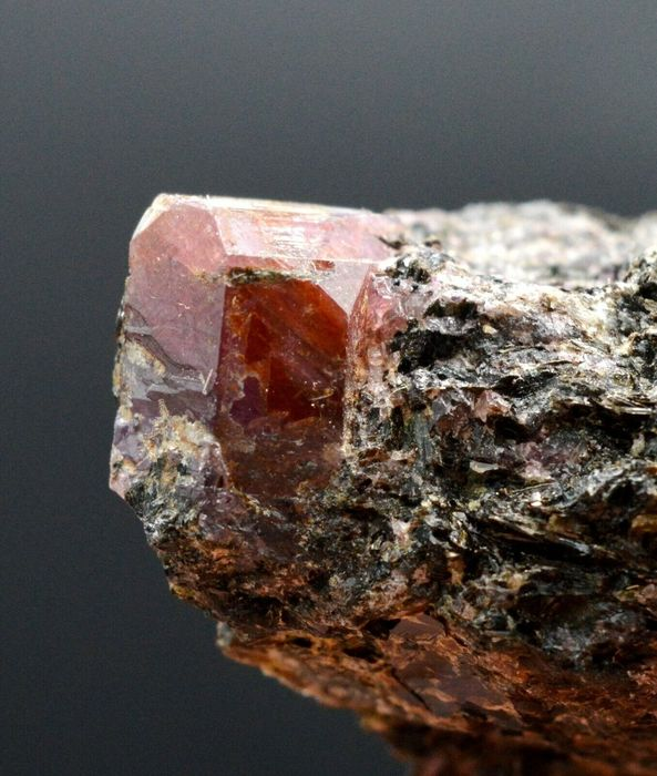 Ruby variety corundum Crystal on matrix - 44×25×20 mm - 28 g