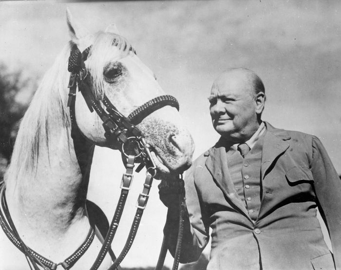 Keystone/Daily Telegraph - Sir Winston Churchill with his horse 'Salve' at Chartwell, Kent, 1964.