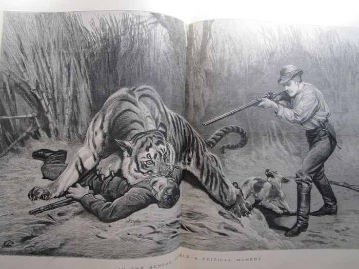 The Graphic - An illustrated weekly Newspaper. Volume 22 July to December - 1880
