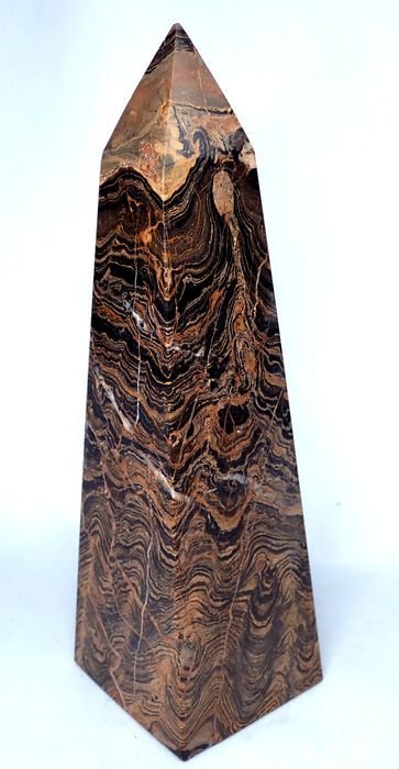** NEW ** Very Rare Fossilized Algae Obelisk - 195×60×55 mm - 795.6 g