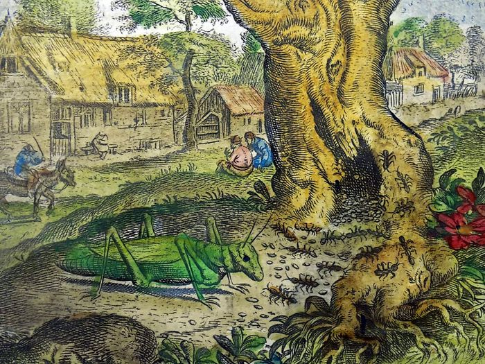Marcus Gheeraerts the Elder (c. 1520-1590); Hand coloured - The Grasshopper and the Ants [Aesop] - 1620