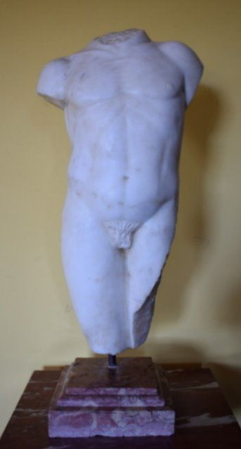 Manly torso - 63 cm - Statuary marble - 20th century