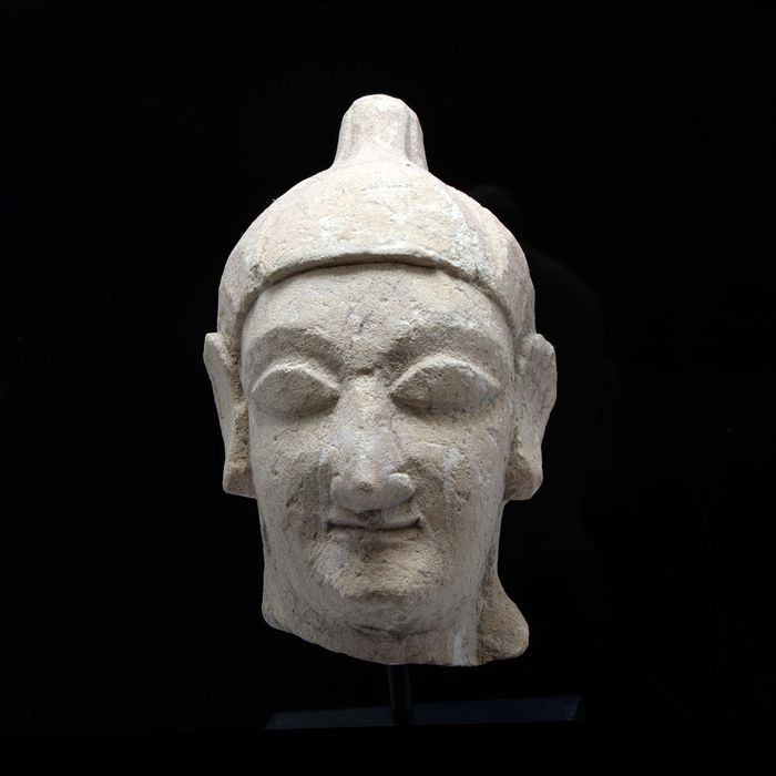 Cypriot Limestone Head of a Noble Youth - (1)