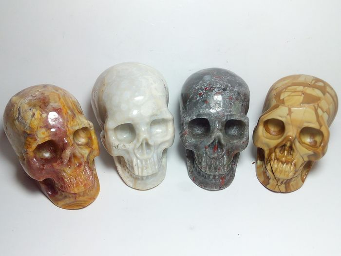 4 Beautiful Skull - Coral Fossil - Petrified Wood - Bloodstone - Cracy Lace Agate Carving - 332 g