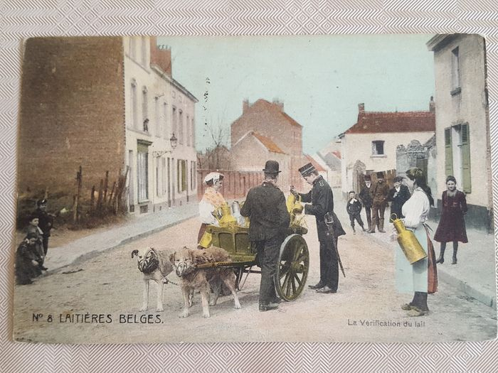 Belgium - Dog cart with people - Postcards (Collection of 10) - 1900-1910