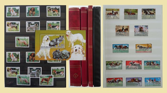 Dogs and Horses - World - Two collections in four stock books