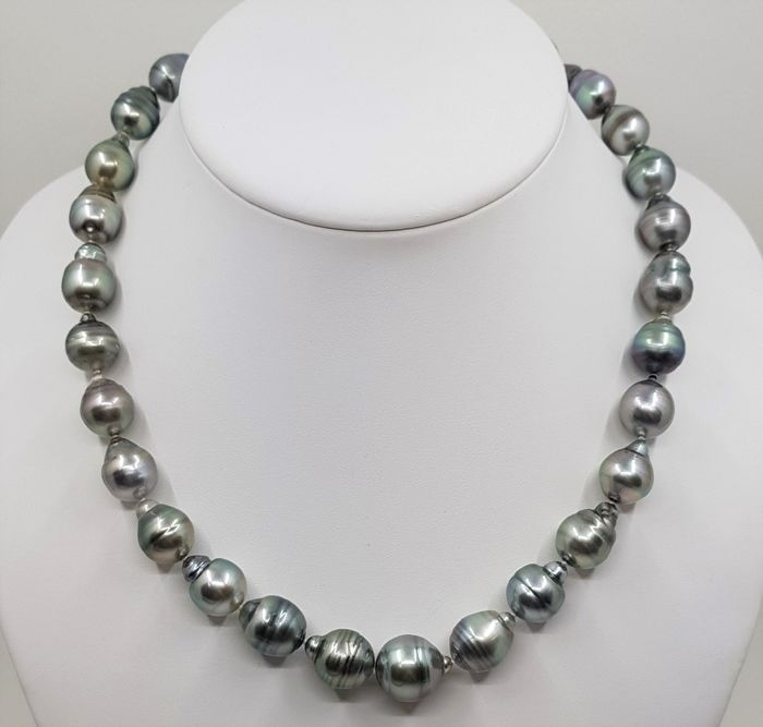 No reserve price - 925 Silver - 11.2x14.8mm Special Colour Tahitian Pearls - Necklace