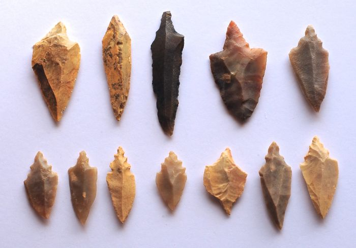 Prehistoric, Neolithic Flint Lot with 12 arrowheads 64 - 28 mm - (12)