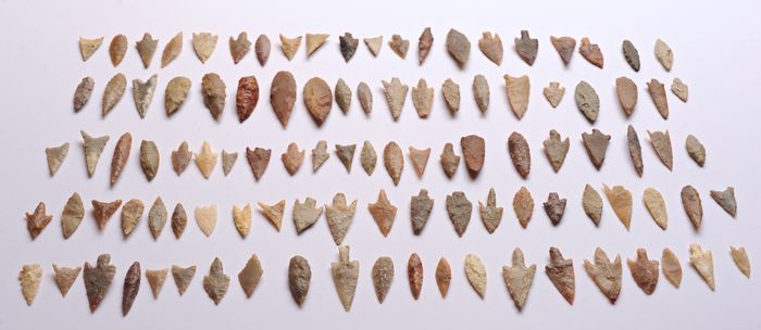 Prehistoric, Neolithic Flint Lot with 105 Neolithic arrowheads 46 - 20 mm - (105)