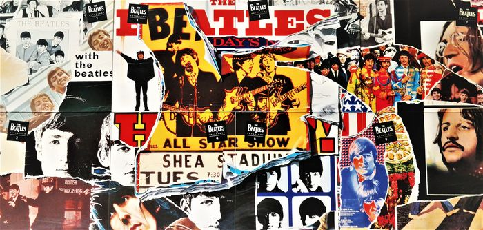 "Beatles - Anthology (Complete Nice Works Of The FAB-Four ) - 8 × Laserdisc, 12"", Stereo, NTSC Box Set - 1996/1996"