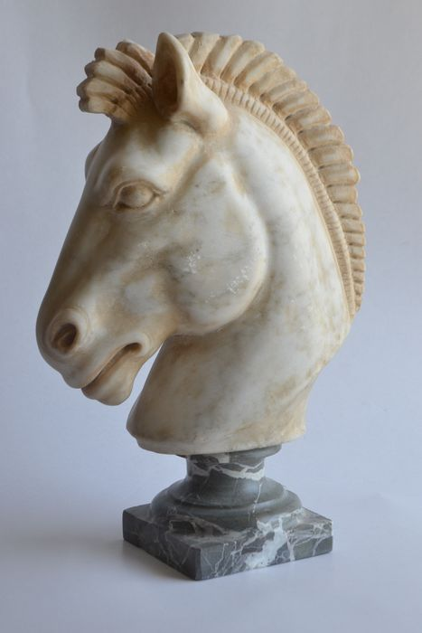 Sculpture, Horse head in white Carrara marble carved in classic style - Marble - Late 20th century