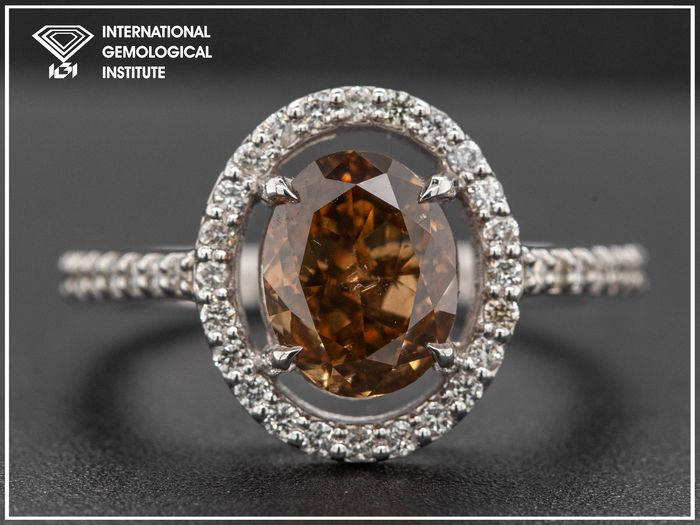 14 kt. White gold, 3.67g - Ring - 2.55 ct Diamond - Fancy Deep Brown