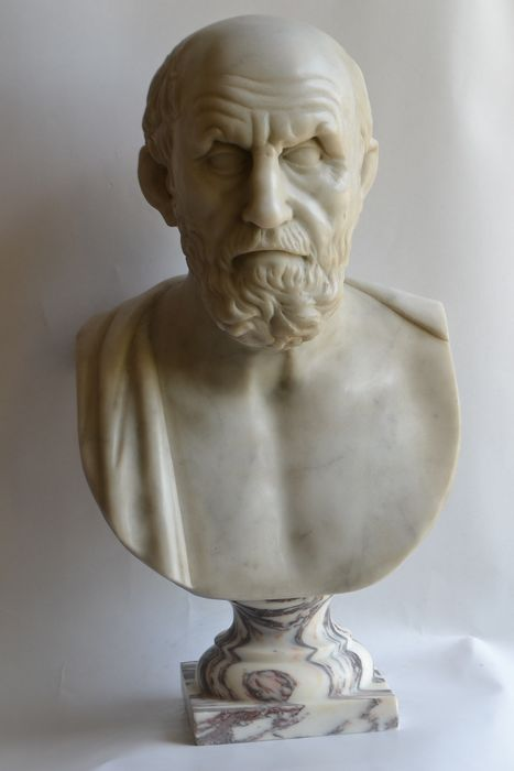 Studio Todini - Sculpture, Bust of Hippocrates - 57 cm - Marble - Second half 20th century