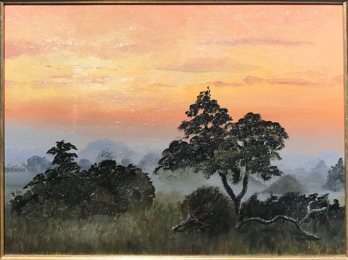 Barbara Pincherle - Sunrise over The New Forest