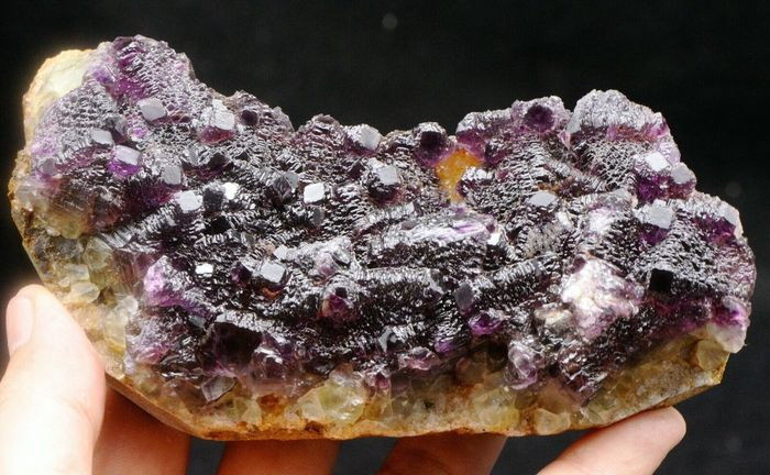 Purple stepped pyramid fluorite crystal cluster . - 145×80×35 mm - 540 g