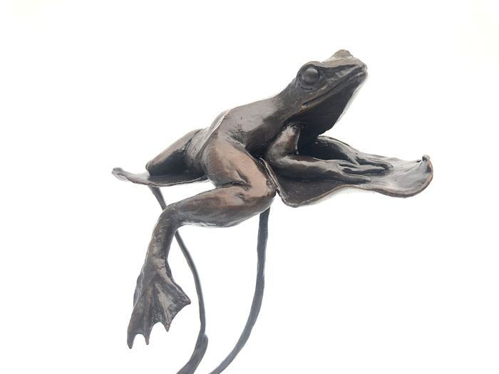 Michael Simpson - Art in Bronze - Richard Cooper & Company - Limited Edition 30/150 Solid Bronze Frog On Lillypad Figuur
