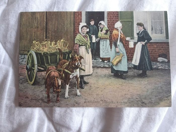 Belgium - Profession - FLEMISH DAIRY - Postcards (Set of 3) - 1910