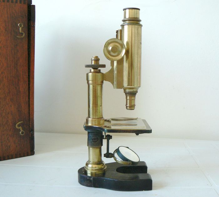 Monocular compound microscope - Brass - Late 19th century