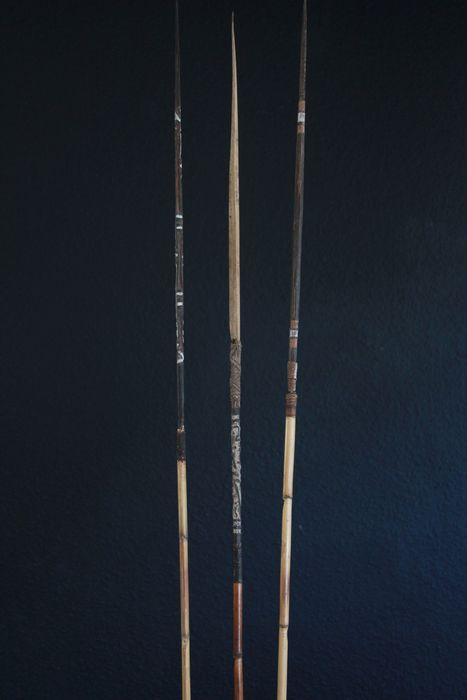 Lot of 3 arrows The arrows are from the Upper Sepik and Middle Sepik (3) - Bamboo - Papua New Guinea