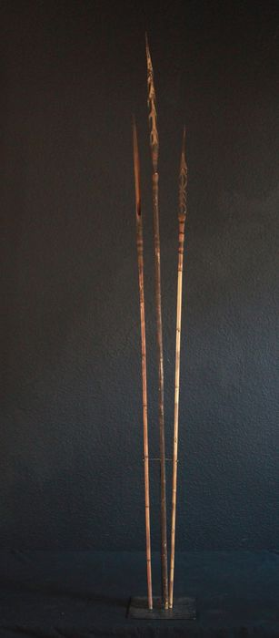 Arrows (3) - Bamboo - Lumi in the Torricelli Mountains - Papua New Guinea