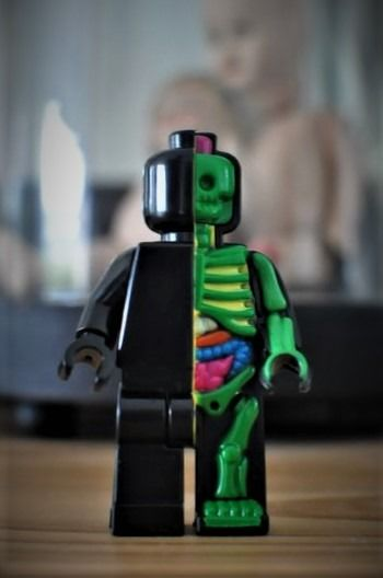 Mighty Jaxx - Jason Freeny - figurina Micro Anatomic Lego Dissected -