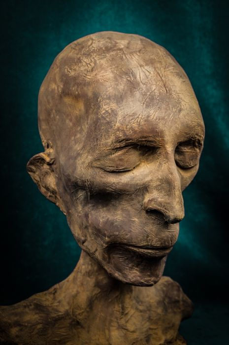 Life-sized Mummified Head and Shoulders - Roger Labat's Cabinet of Curiosities - 35×21×25 cm