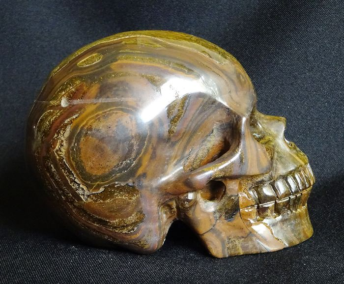 Tiger Eye Skull (Without Reserve Price) - 114×83×72 mm - 955 g