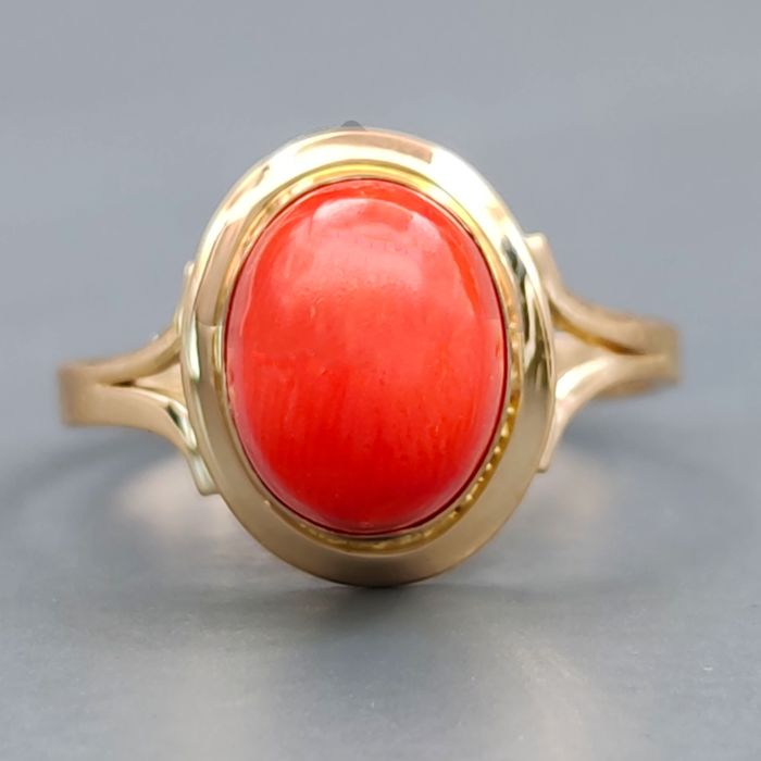 18 kt. Yellow gold, Red coral from the Mediterranean - Ring