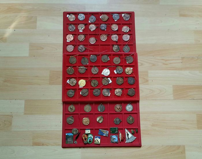 Italy - Alpine Corps - N.70 Medals, pins, badges