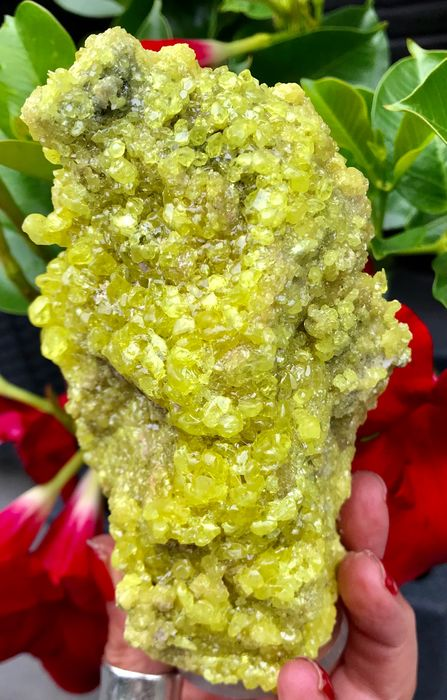 Thick sulfur crystals on matrix - 13×8×6 cm - 314 g - (1)