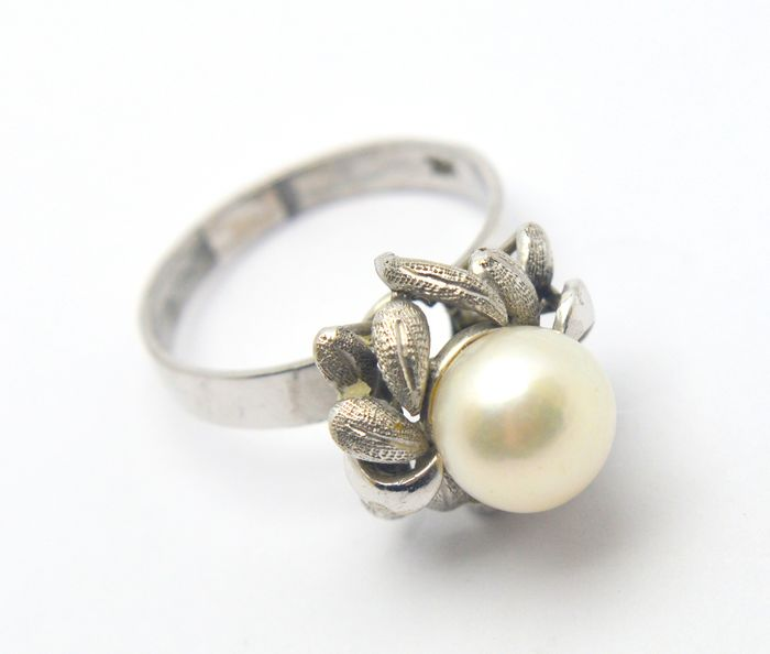 14 kt. Freshwater pearl, White gold, 9 mm - Ring