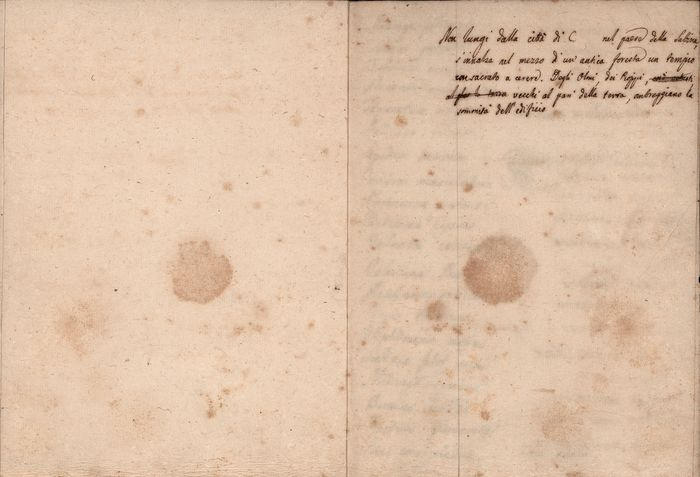 Manuscript;  Ancient collection with list of medicinal herbs - 1800/1810