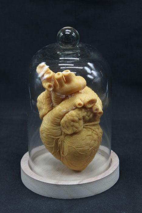 "Replica ""Golden"" Heart in Bell-jar - - - 14×10×10 cm"