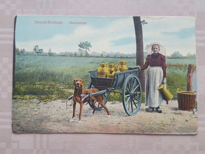 Netherlands - Profession - Street scenes of milk sales - Postcards (Collection of 14) - 1900-1920