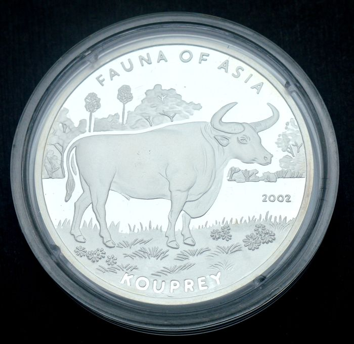 Korea - 5 Won 2002 Fauna of Asia - Kouprey - Silver