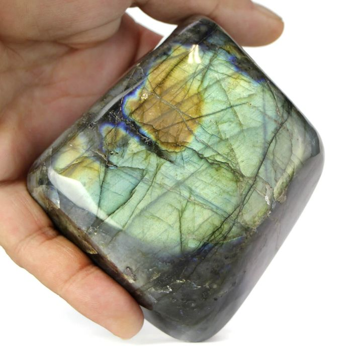Labradorite with Yellow and Blu Iridescence Free Form - 705×90×50 mm - 710 g