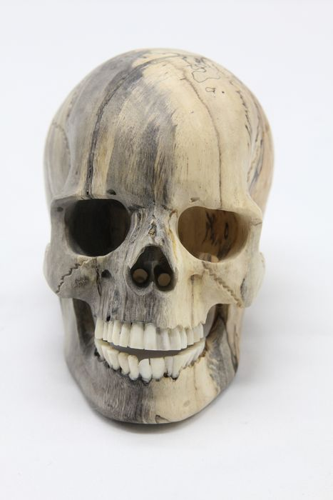 Small replica Skull, carved from Tamarind Wood, with Bone Teeth - Tamarindus s.p. - 12×10×8 cm