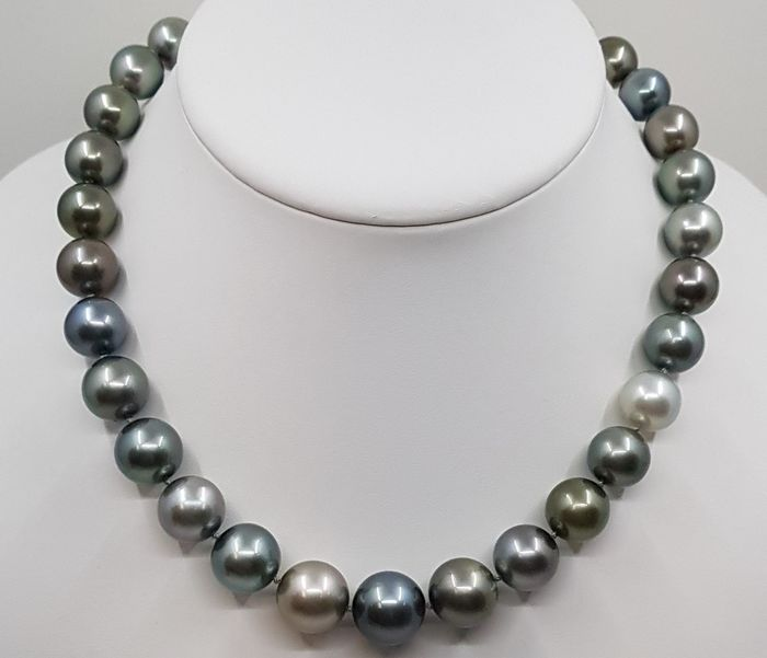 No reserve price - 18 kt. White Gold - 11x14.8mm Round Multi Tahitian Pearls - Necklace